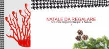 Newpop di Antonio Vizzini